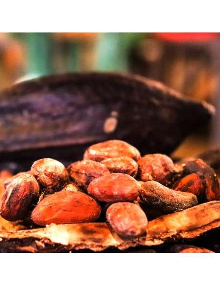 Yacon Kakaonibs Bio bewusstnatur Kakaobohnen