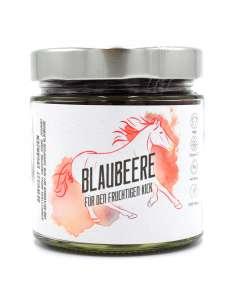 Blaubeerpulver Bio bewusstnatur Produkt