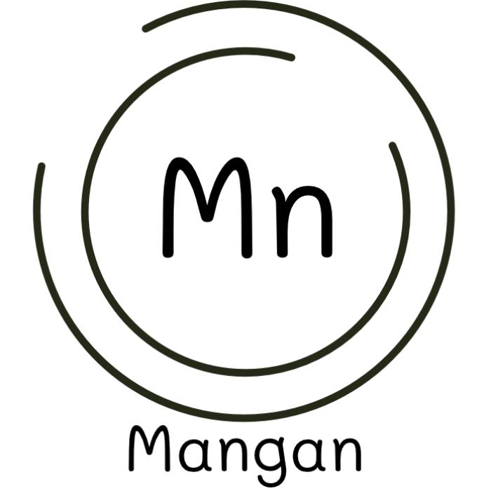 bewusstnatur Spurenelement Mangan