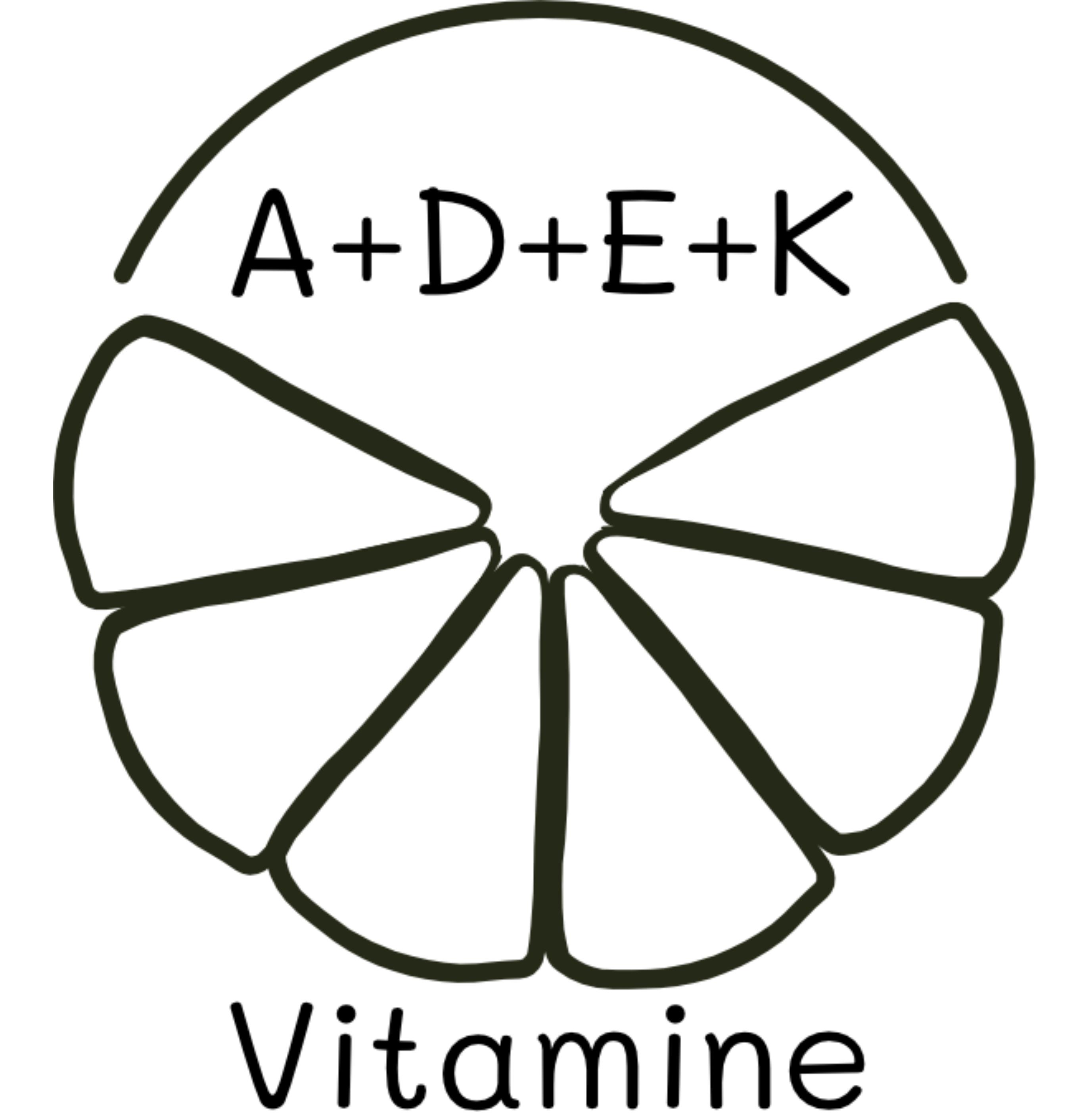 bewusstnatur Vitamine A+D+E+K