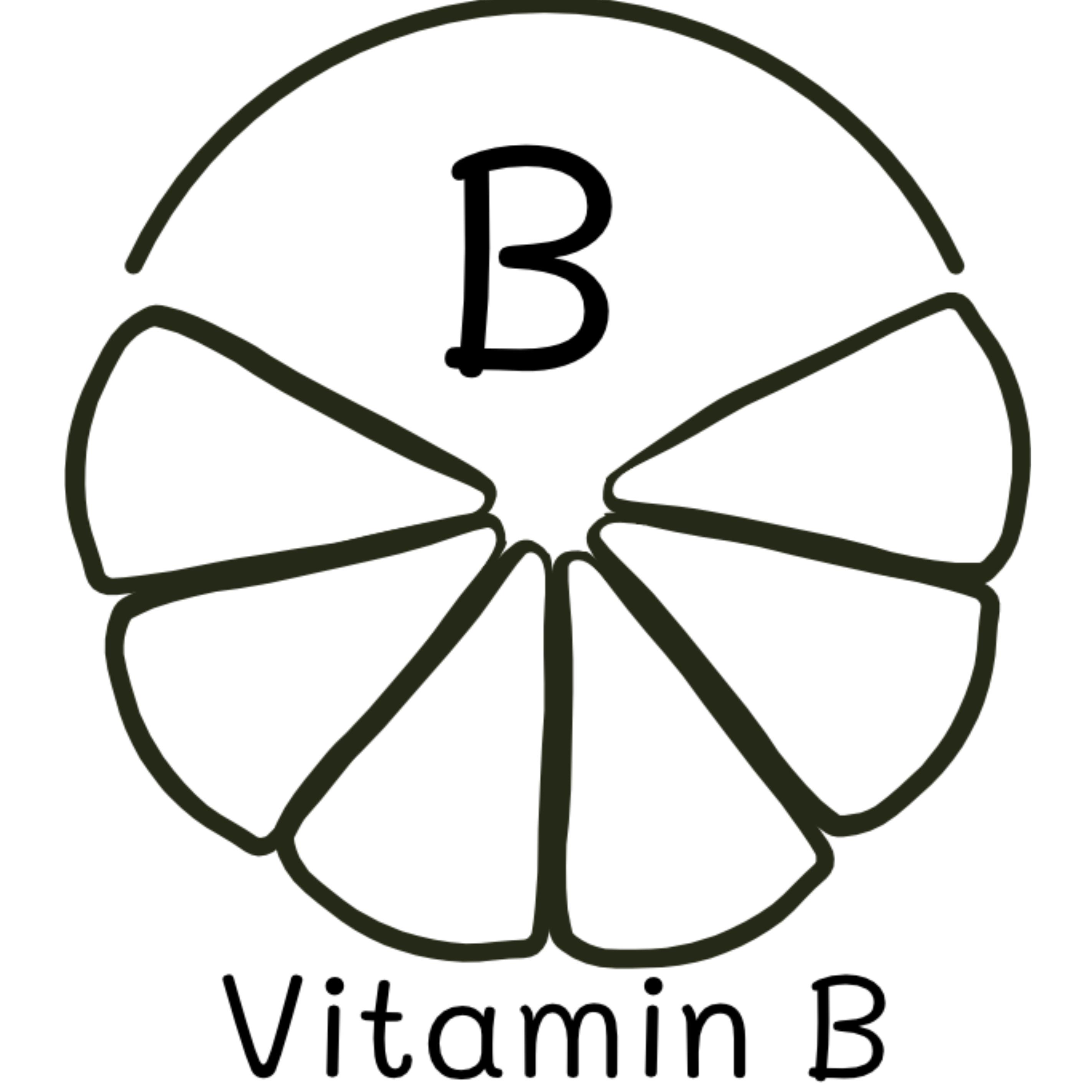bewusstnatur Vitamin B